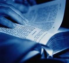 bilble reading