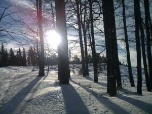 A zima 06012013